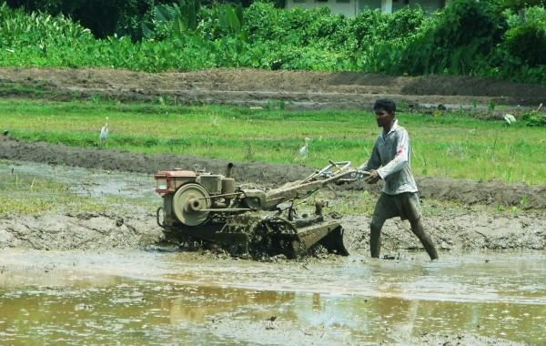 2003_SriLanka_Bild4