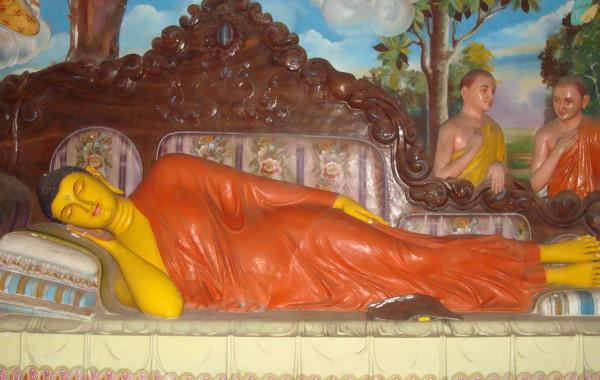 2006_SriLanka_Bild5