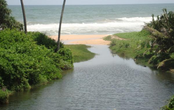 2008_SriLanka_Bild6