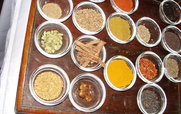 2010_SriLanka_Bild3