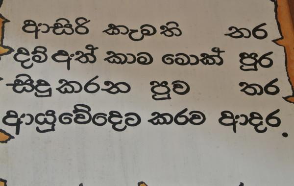 2012_SriLanka_Bild2